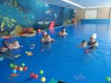 Aquababy v Devínskej