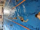Plávanie vrcholové Devínska
